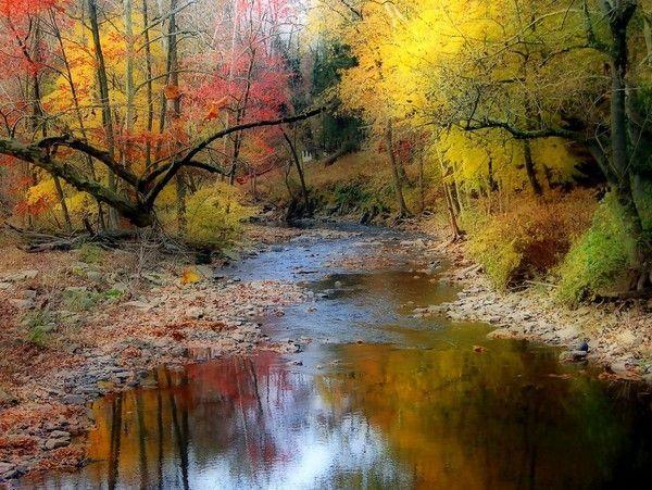 Photo de beau paysage