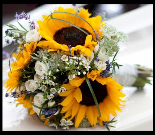 image d 39 un bouquet de fleurs de tournesol en png. Black Bedroom Furniture Sets. Home Design Ideas