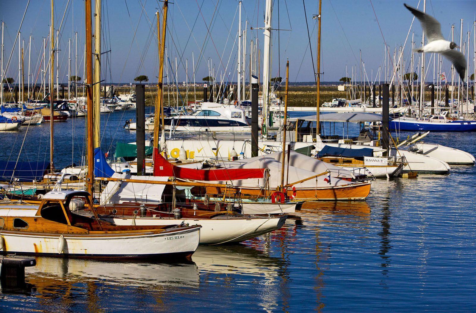 Arcachon gironde port de plaisance - Restaurant arcachon port de plaisance ...